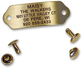 LuckyPet Rivet-On Pet ID Tag, Silent, Personalized and Customized Dog ID Tag That Rivets Directly onto Collar, Stainless Steel or Polished Brass, 3 Sizes