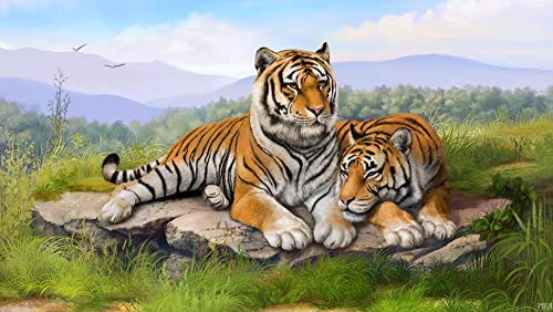 5D Diamond Painting Kits Round Drill Fresh Tiger Embroidery for Beginners Living Room Decoration 30X40Cm