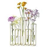 Nother Jarrón de tubo de ensayo para flores, jarrón de cristal con soporte de metal, jarrón de tubo de prueba hidropónico, jarrones de plantas con bisagras, jarrón para decoración del hogar