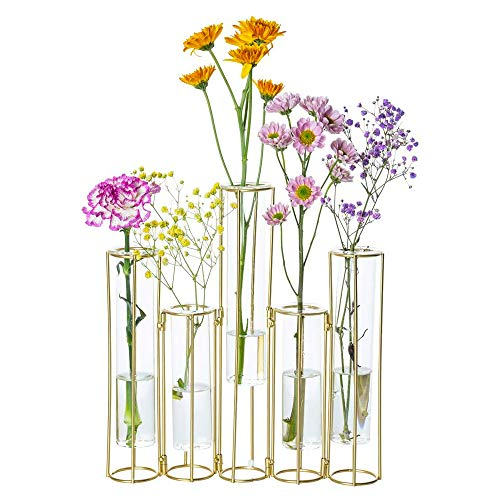 Nother Jarrón de tubo de ensayo para flores, jarrón de cristal con...