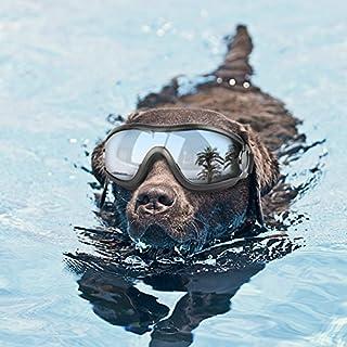 Namsan Gafas de sol para perro, anti rayos UV, impermeables, resistentes al viento, protección para los ojos, para perros grandes y medianos