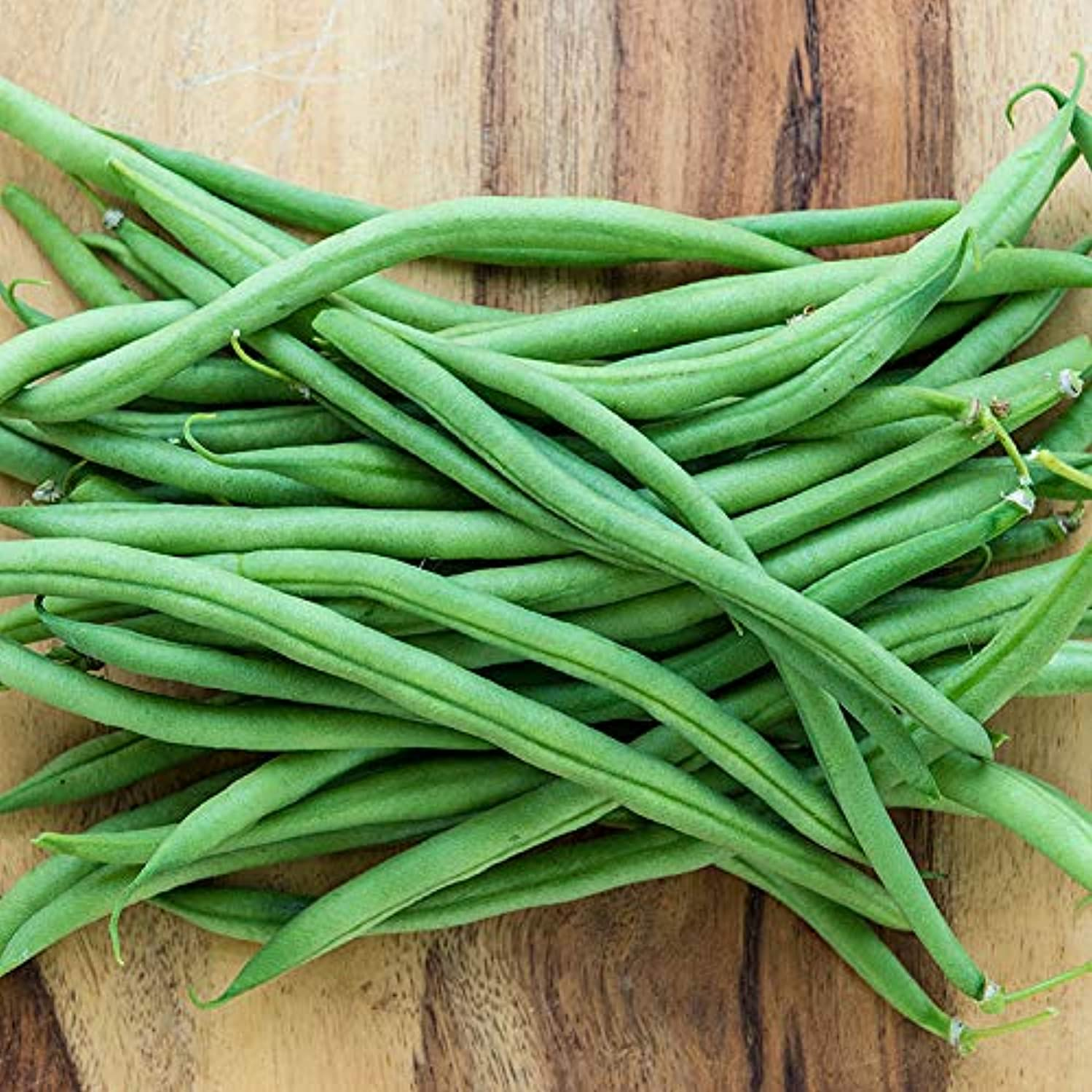 Tendergreen Green Bean Seeds, 50+ Premium Heirloom Seeds, Fantastic Addition to Your Home Garden! Bush Bean, (Isla's Garden Seeds), Non GMO, 85-90% Germination Rates, Seed