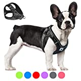 Bororo Comfort Step in Dog Harness Easy to Put on Small Dog Harness Choke Free Adjustable Pet Vest No Pull Outdoor Sport Vest Harness Reflective Soft Padded Vest for Small Medium Dogs Puppy (L, Grey)