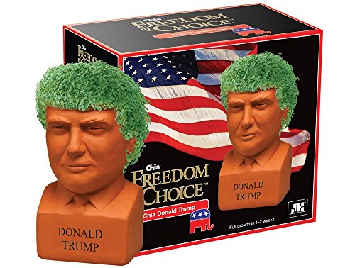 Chia Donald Trump President with Seed Pack, (8' x 4.5' x 7.3') Decorative Pottery Planter, Easy to Do and Fun to Grow, Novelty Gift, Perfect for Any Occasion Pet