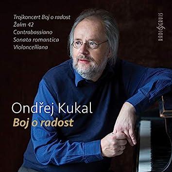 Ondřej Kukal: Struggle for Joy (Live)