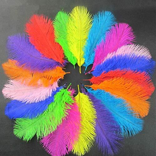 DFYYQ Feathers de Avestruz 10 unids/Lote 15-20 cm Joyería de Bricolaje Haciendo Plumas de decoración de Fiesta de Bodas y Plumas (Color : D Mix Color, Size : 15-20cm)