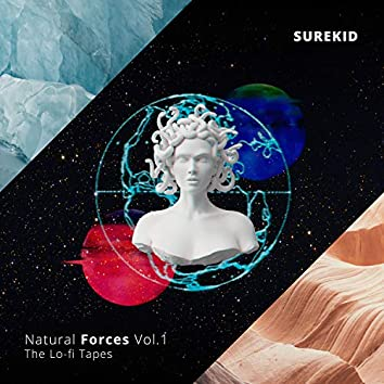 Natural Forces Vol.1 - The lo-fi tapes