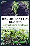 INSULIN PLANT FOR DIABETES: Beginner Guide to Using Insulin Plant for Management of Diabetes