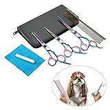Haofy Juego de Tijeras para peluquería para Mascotas, Corte de Pelo de Gato de Perro de Acero Inoxidable Profesional Tijeras para peluquería Tijeras Curvas