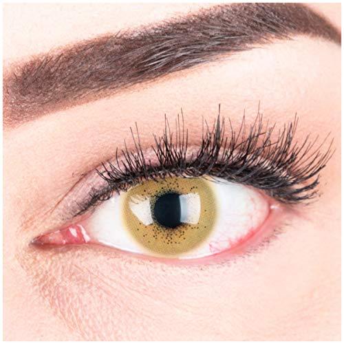 """Sehr stark deckende und natürliche braune Kontaktlinsen SILIKON COMFORT NEUHEIT farbig """"Lacey Brown"""" + Behälter von GLAMLENS - 1 Paar (2 Stück) - DIA 14.50 - ohne Stärke 0.00 Dioptrien"""