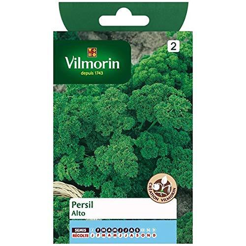 Vilmorin - Sachet graines Persil frisé Alto