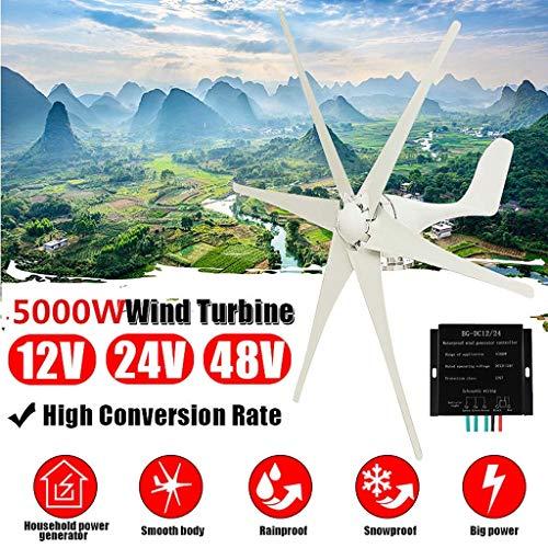 5000W Windgenerator + Regler 12V / 24V / 48V 6 Blade-Windkraftanlagen Horizontale Startseite Powers Windmühle Energieanlagen Lade (Voltage : 24V)