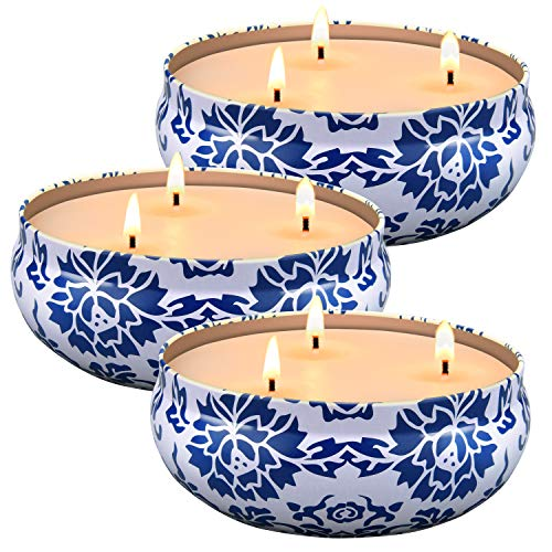 Ailego Citronella Candles Outdoor and Indoor 3 x 13.5 Oz,3 Wick Scented Candles Gift Set,Aromatherapy Candles Natural Soy Wax Candle in Portable Travel Tin 3 Pack