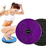 ZHUYIYI Waist Twister Body Shaping Body Board Wriggling Plate Twist Waist Torsion Disc Board Aerobic Magnet Female Twister Sports Equipment Purple, Diameter : 9.75inch