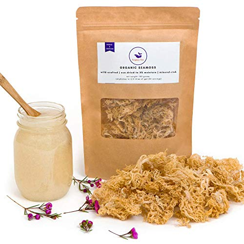 Happy Fox® Organic Sea Moss | Premium Quality, Great Value | 100% Wildcrafted, Non GMO, Raw Organic Seamoss for Gel | Clean, Sundried and Odorless | Seamoss Supplement Rich in Vitamins and Mineral