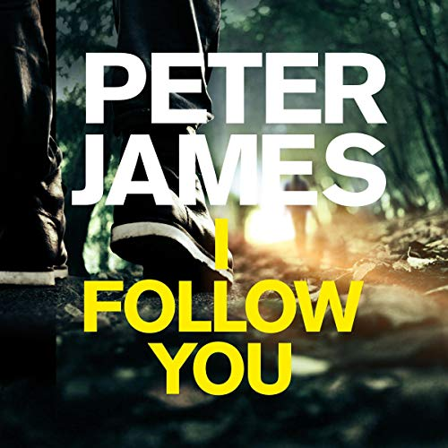 I Follow You cover art