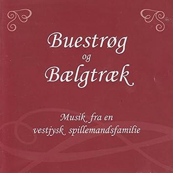 Buestrøg og Bælgtræk (Musik fra en vestjysk spillemandsfamilie)