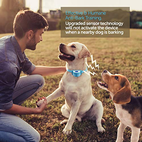 Boshel Dog Bark Collar - Newest Upgraded Anti Bark Electric Dog Collar - Beep, Vibration & Safe Humane Static Shock - For Small, Medium & Large Dogs - Rechargeable & Waterproof Pet Anti Barking Collar