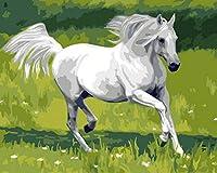 油絵 数字キットによる デジタル インテリア キャンバスの油絵子供 ホーム オフィス装飾 40x50センチ-草白い馬_フレームレス