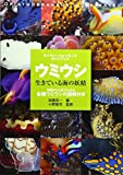 ウミウシ―生きている海の妖精 (ネイチャーウォッチングガイドブック) 篤司, 小野