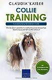 Collie Training – Hundetraining für Deinen Collie: Wie Du durch gezieltes Hundetraining eine einzigartige Beziehung zu Deinem Collie aufbaust