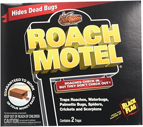 6 Pack Black Flag Roach Motel Insect Trap
