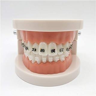 Amazon.es: ortodoncia materiales