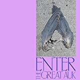 Enter The Great Auk