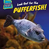 Look Out for the Pufferfish! (Surprisingly Scary!)