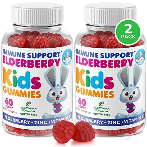 Elderberry Gummies for Kids (2 Pack) Natural Immune System Booster and Health Support with Black Sambucus Elderberries Extract - Vitamin and Zinc Herbal Immunity Boost Supplement for Childre