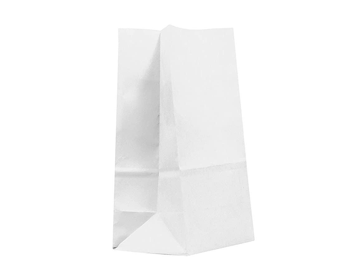 GIFT EXPRESSIONS 20CT Paper Bag, Favor Sack,Biodegradable, Food Safe Ink & Paper, Premium Quality Paper (Thicker), Favor Sack, Kraft Paper Sack (Small, White)