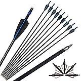 ZSHJG 12pcs 30 Pollici Frecce in Fibra di Vetro Spine 500 Frecce di Caccia con Freccia Punto Frecce di Pratica Bersaglio per Ricurvo e Arco Compound (Blu)