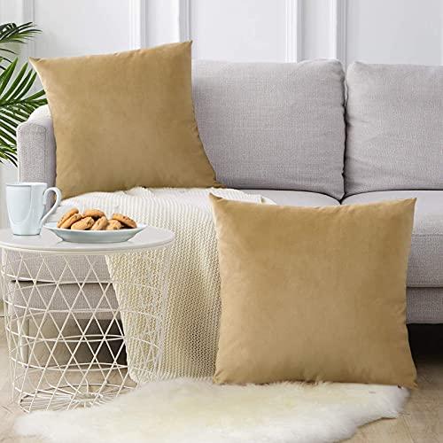 FORTRY Juego de 2 fundas de cojín de terciopelo suave y sólido, decorativas, cuadradas, para sofá, dormitorio, cojín lumbar, 55 x 55 cm, color caqui