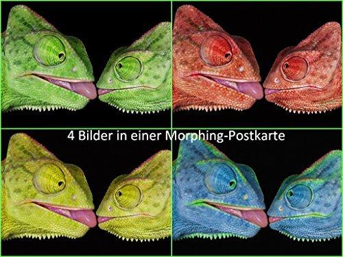 Lentikular-Postkarte mit Wechselbild / Morphing (Farbänderung)Nr.10076