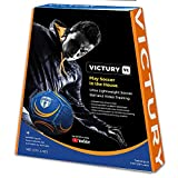 Ollyball VICTURY Soccer Ball for Training and Indoor Play