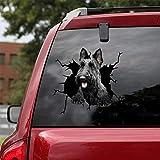 Ocean Gift Scottish Terrier Car Decals, Dog Car Stickers Pack of 2 - Realistic Scottish Terrier Stickers for Car Windows, Walls Series 66 Size 12' x 12'