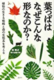 葉っぱはなぜこんな形なのか? 植物の生きる戦略と森の生態系を考える