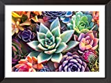 Cross Stitch Kits for Adults, Cross-Stitch Counted Kits Preprinted 11 Count Cross-Stitch Kit for Beginner, 11CT Succulents Pictures Cross Stitch Arts and Crafts for Adults Home Wall Decor11.8x15.7inch