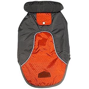 JoyDaog Premium Outdoor Sport Waterproof Raincoat Dog Jacket,Super Breathable Mesh Lined Dog Coats for Small Dogs,Orange