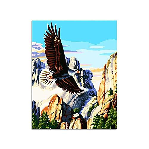 ZGNY Kit numérique de Peinture Bricolage Peinture au Pinceau Peinture à l'huile (40Cmx50Cm / 16 Pouces X 20 Pouces sans Cadre) -Aigle dans Le Canyon