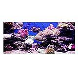 Hancend Póster para decoración de Acuario con Adhesivo de Efecto de Acuario Coral Seaworld(XXXL)