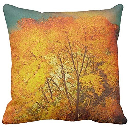 FPDecor Housses de Coussin, Throw Pillow Cover Orange Photography Autumn Tree Nature Blue Leaves Decorative Pillow Case Home Decor Square 18 x 18 inch Pillowcase