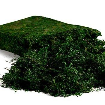 Farmoo Artificial Moss for Plant Fairy Garden Lawn Crafts Wedding Decor  Fresh Green Moss