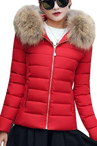 YMING Damen Winter Jacke Warm Gefüttert Kurz Daunen Baumwolle Skijacke Steppjacke mit Kapuze,Rot-C,XXS
