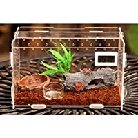 Zhhlaixing ペット用品 Transparent Pets Amphibian Spider Habitat Cage Set Carry House with Cover