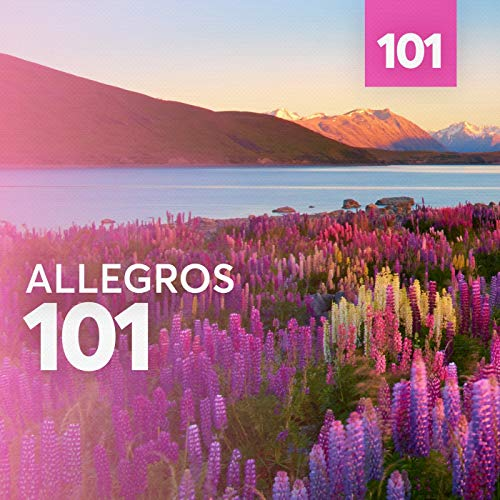 Violin Concerto No. 1 in D Major, Op. 6: III. Rondo (Allegro spirituoso)