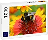 Lais Puzzle Bumblebee 1000 Piezas