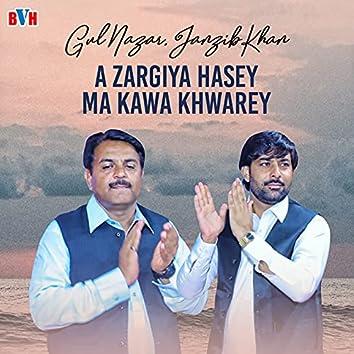 A Zargiya Hasey Ma Kawa Khwarey - Single