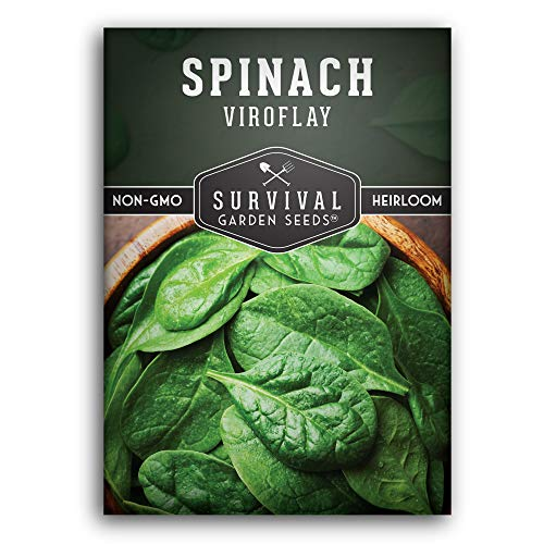 Survival Garden Seeds - Viroflay Spinach Seed for Planting - Packet with Instructions to Plant and Grow Your Home Vegetable Garden - Non-GMO Heirloom Variety