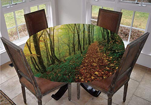 Angel Bags National Parks Home Decor Round Tablecloth,Surreal Foggy Deep in Forest Eco Path Full of Leaves Landscape Polyester Table Cover,90 Inch,for Indoor and Outdoor Events Green Yellow